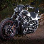 Harley Davidson Photograh